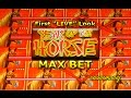 """Year of the Horse Slot -  First """"LIVE"""" Look - MAX BET! - Slot Machine Bonus"""