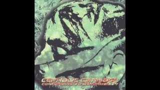 Cephalic Carnage - Jihad