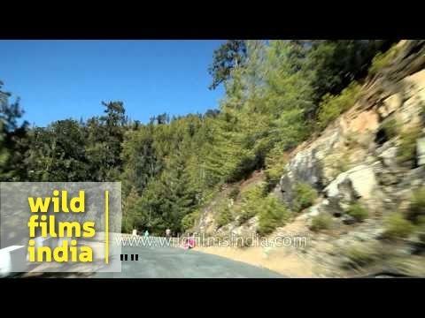 Way to Haa Bhutan C1 L72 6