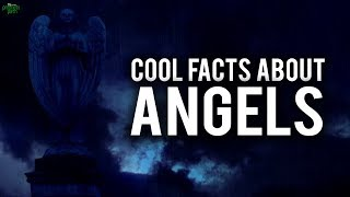 DID YOU KNOW THIS ABOUT THE ANGELS?