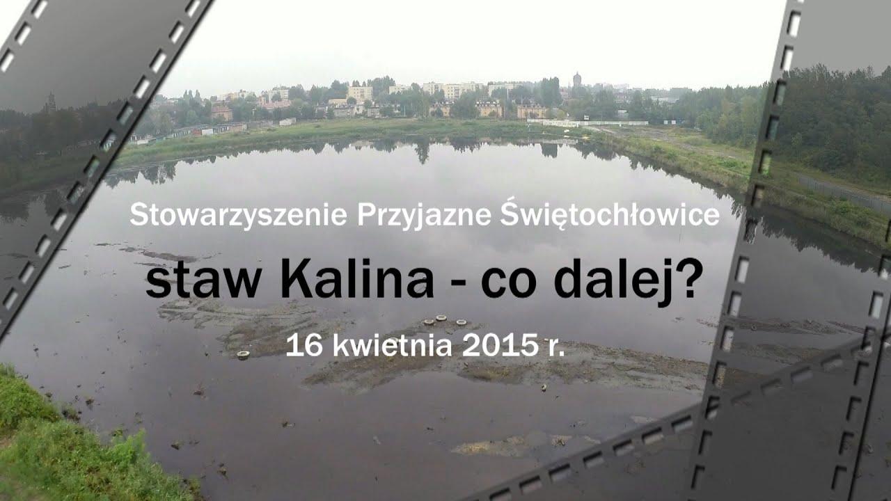 Staw Kalina - co dalej - kwiecień 2015