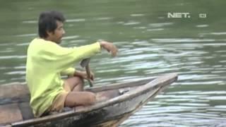 NET5 - Kisah kehidupan masyarakat Bajo