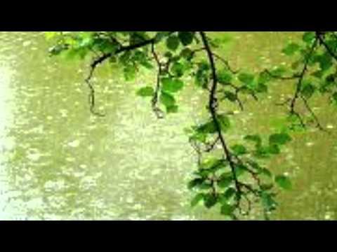 Градский Александр - Будет ласковый дождь
