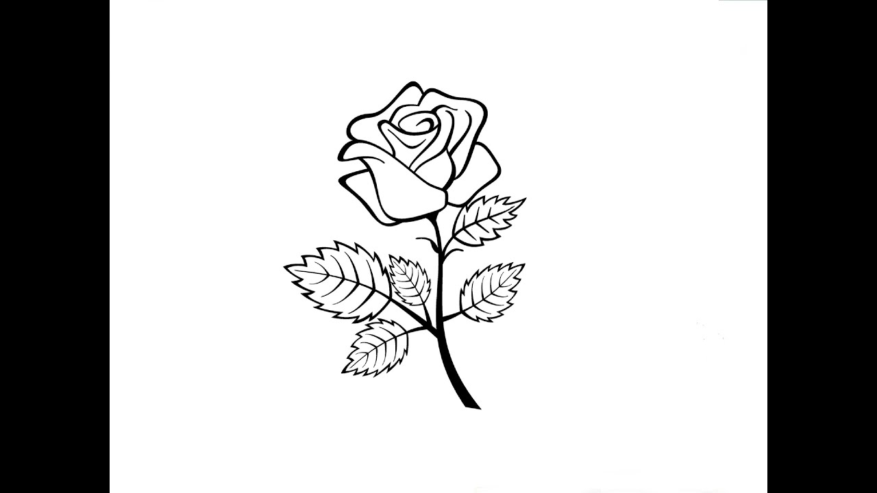 Рисунки розы для срисовки 100