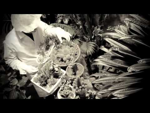 АК-47 - Цветы гербария feat. Сява