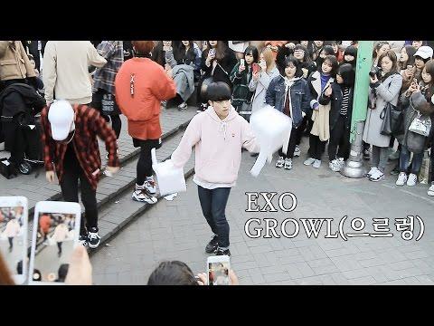 """EXO(엑소) """"GROWL(으르렁)"""" Dance Cover by DOB from Korea at Hongdae Seoul"""