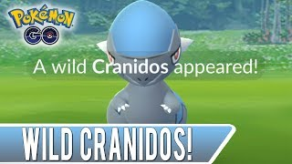 A Wild Cranidos Has Appeared! Can Jonno Catch It?