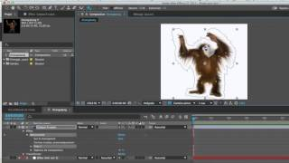 Marionette dans After Effects