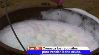 CONOZCA LOS REQUISITOS PARA VENDER LECHE CRUDA.wmv