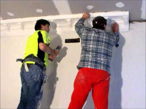 Plastering Corbel Cornice installation ~ Hawthorn Plaster Repairs