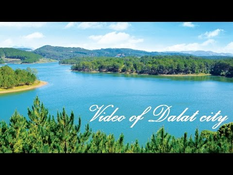 Dalat travel guide - Introduction of Da Lat City, Vietnam