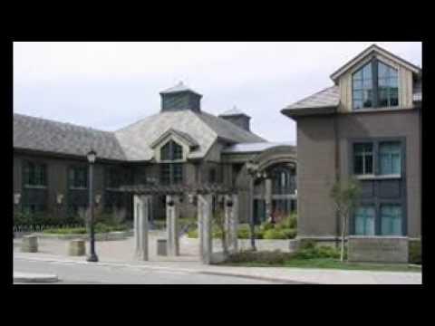 12#Haas School of Business, University of California Berkeley
