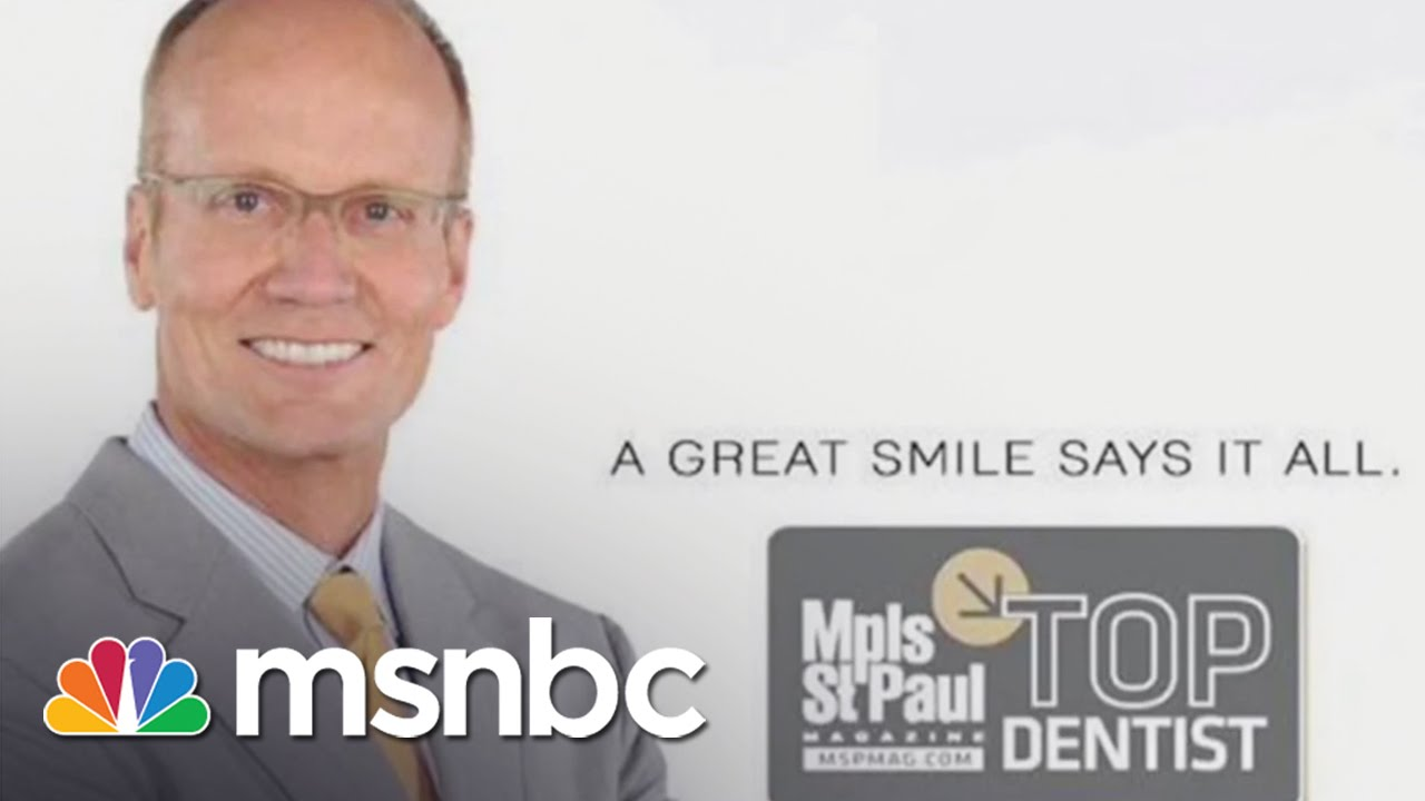 The Dentist Who Killed Cecil The Lion | msnbc