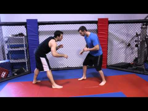 How to Do the Single-Leg Takedown in Freestyle Wrestling : Martial Arts Training Image 1