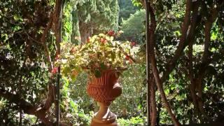 Paseo por los Jardines de Monforte ( Valencia)