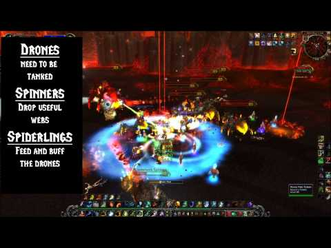 Cataclysm - Beth'tilac : Firelands Boss Strategy Guide