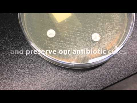 Inspired by Innovation: Detecting Antibiotic Resistance