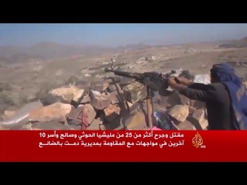 فيديو: مقتل عشرات الحوثيين وآسر آخرين في مواجهات بدمت وتقدم مستمر للشرعية
