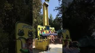 2018 Happy Hollow Zoo Frog Jumper