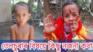 Telsura And Voice Assam