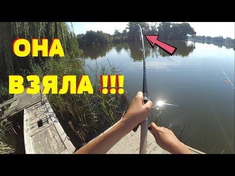 Рыбалка с ПИРСА !!! ЩУКИ !!! ОГРОМНЫЕ КАРАСИ !!! ПЛАТНИК !!!