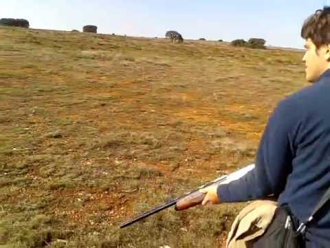 caçando javali em espanha. (Thiago)