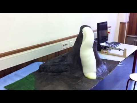 how to make elephant toothpaste without hydrogen peroxide