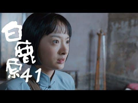 白鹿原  | White Deer 41【TV版】(張嘉譯、秦海璐、何冰等主演)