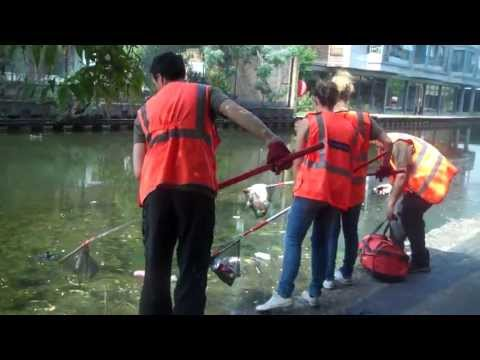 WoW volunteers clear litter from the Regents canal