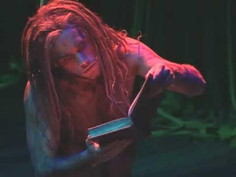 music_note Chords for Tarzan Musical - Auf Einmal