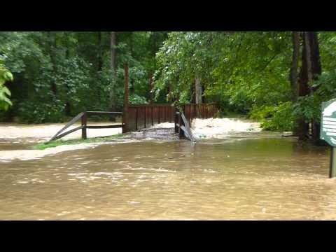 Clifton Flood Buckley Park