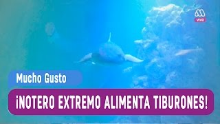 Reportero Extremo on FREECABLE TV