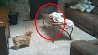 5 Misteriosos Eventos Captados en Cámara