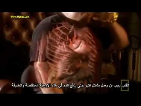 Inside The Living Body ( FULL MOVIE ) مترجم للعربيه