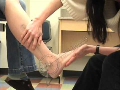 Madison College Ankle Dorsi - Plantarflexion