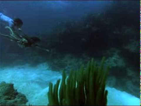 The Bermuda Depths is listed (or ranked) 17 on the list The Best Carl Weathers Movies