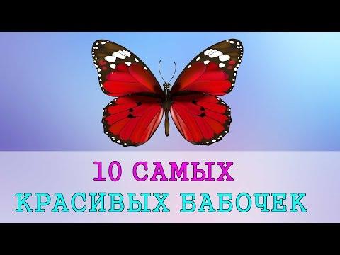 Топ 10 самых красивых девушек мира - youtube