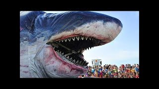 TOP 25 BIGGEST Animals You Won't Believe EXISTED!