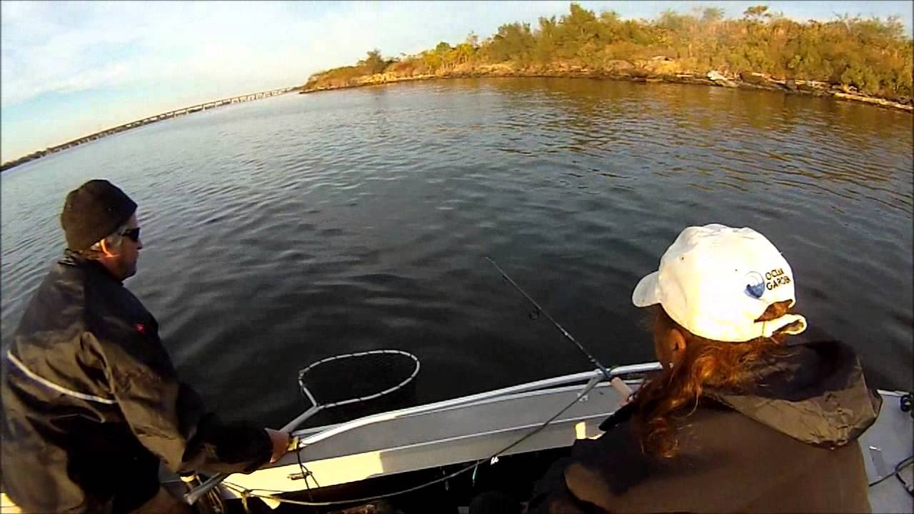 Striper fishing in the baltimore harbor 11 9 2014 youtube for Md fishing license