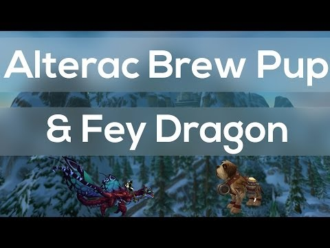 Enchanted Fey Dragon Mount & Alterac Brew Pup Pet Impressions/Review