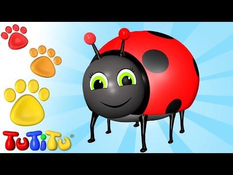 TuTiTu Deutsch | Tiere auf Deutsch | Käfer und andere Tiere