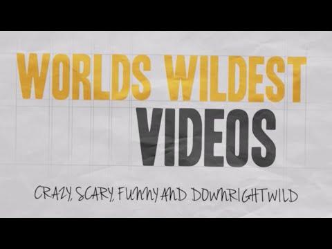 WORLDS WILDEST VIDEOS | TOPPLED CRANES | EPISODE 1