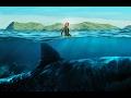 Это невероятно !!! Акула - убийца .