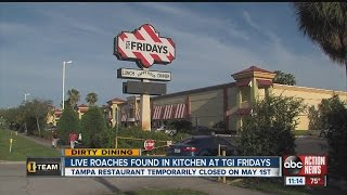 Dirty Dining: TGI Fridays