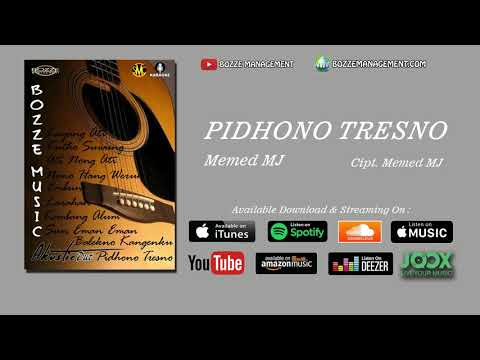 PIDHONO TRESNO - MEMED MJ [ OFFICIAL MUSIC AUDIO ]