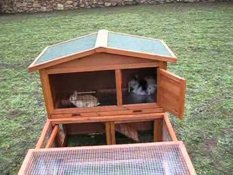 Parque y jaula de madera youtube - Casas para conejos enanos ...