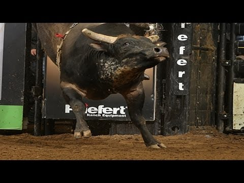 I'm A Gangster Too Dispatches Chase Outlaw (pbr) video