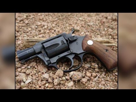 India's lightest hand gun ever, 'Nidar', cheaper than iPhone