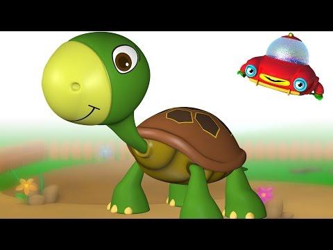 TuTiTu Animals   Animal Toys and Songs for Children   Turtle