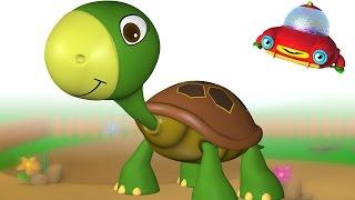 TuTiTu Animal Songs for Children | Turtle Song